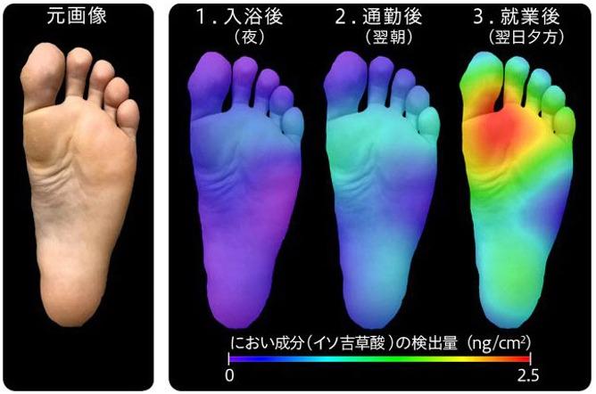 足の臭いはどこから?