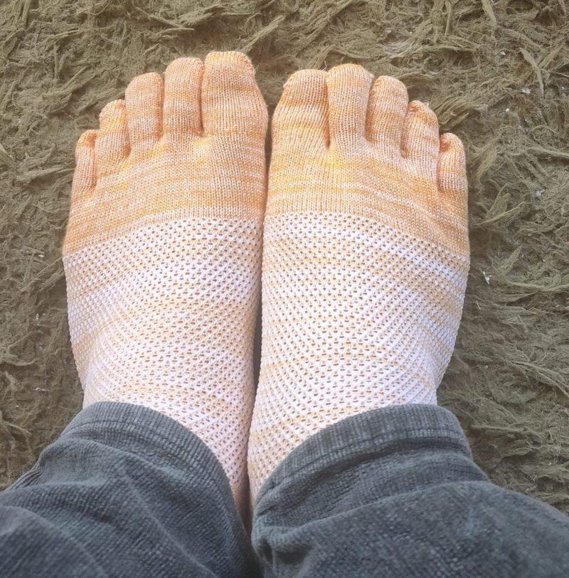 mizunoの五本指靴下を履いてみたよ